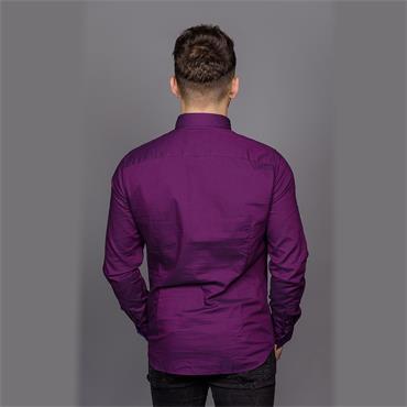 Button Down Washed Shirt - 511 Charisma