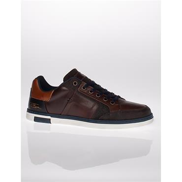 Lloyd & Pryce Wycherley Shoes - Bournville