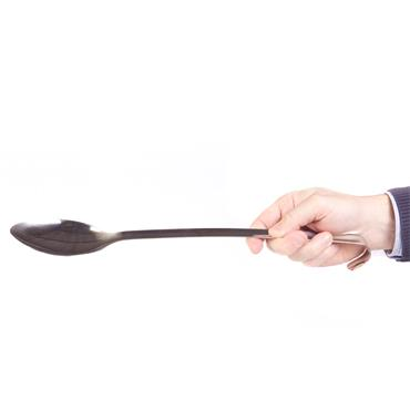 Serving Spoon Long Handle 20""