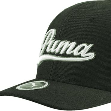 Puma Gents Script Fitted Cap Forest Night - White