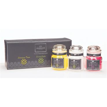 3 Luxury Fragranced Candles by Newgrange Living