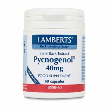 Lamberts Pine Bark Extract Pycnogenol 40mg 60 Caps