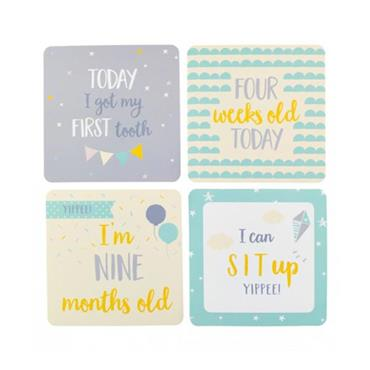 Busy B Baby Milestone Cards