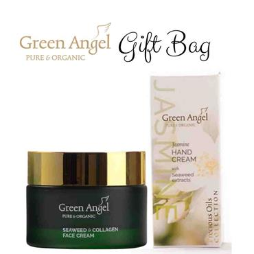 Green Angel Gift Bag