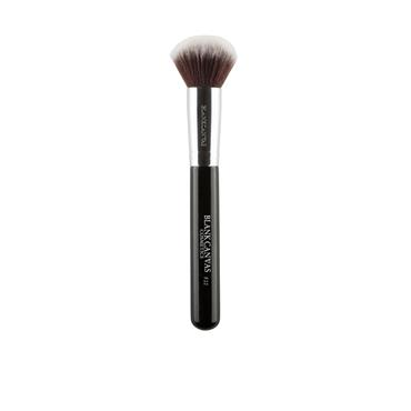 BLANK CANVAS BRUSH F22