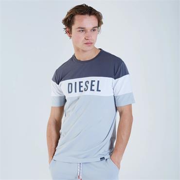 DIESEL EARL T-SHIRT - GREY