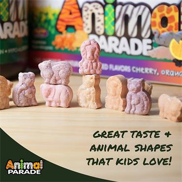 Source of Life Animal Parade Childrens Chewable Multi Assorted Flavors 60s