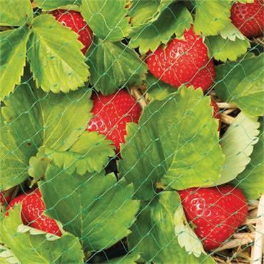Gardman Protective Fruit Netting 4m x 2m