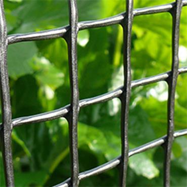 19mm Garden & Plant Mesh 0.5m Green