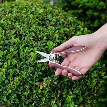 Kent & Stowe Garden Life Snips
