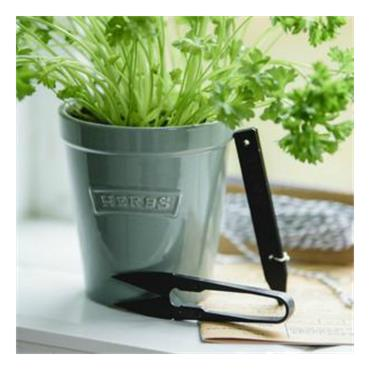 KS DFV Gardeners Gift Pot