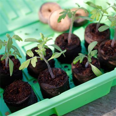 Gardman Half Seed Tray