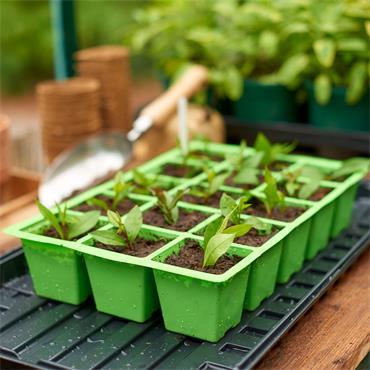 Gardman Seed Tray Insert 15 Cell