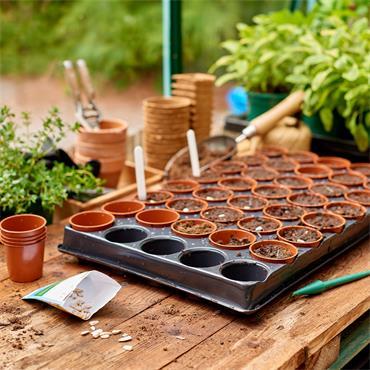 Gardman Seed & Cutting Tray 40 Pot