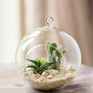 Large Glass Globe Terrarium