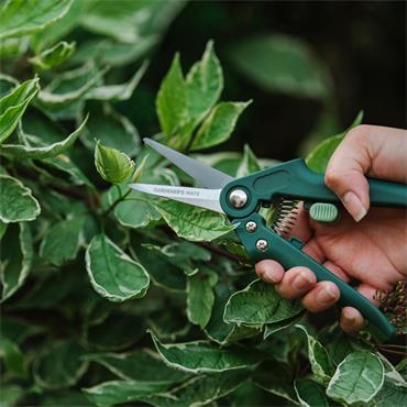 GMT Garden Snips