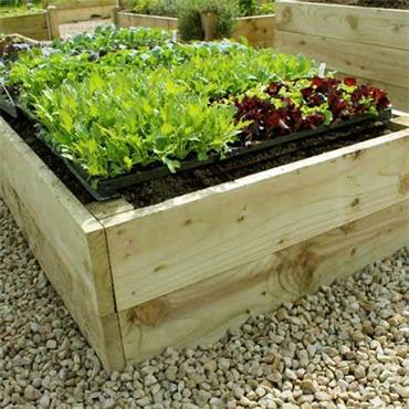 Premier Raised Bed (Irish Made)