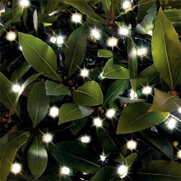 200 Solar LED String Lights Warm White