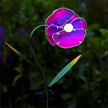 Solar Pansy Stake Light