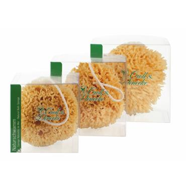 Natural Sponge with rope in Giftbox