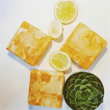 NatZen Sunny Citrus Soap