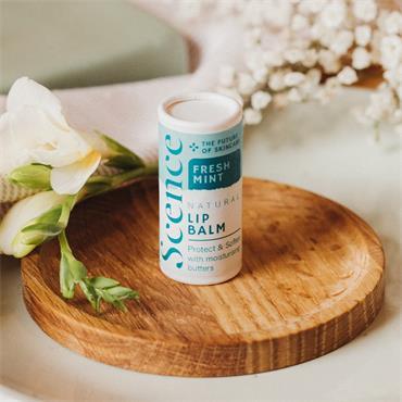 Scence Lip Balm - Pepperminty 6.5g tube