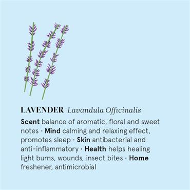 The Nature of Things Lavender Essential Oil - 12ml