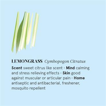 The Nature of Things Lemongrass Essential Oil - 12ml