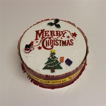 9 Inch Iced on Top Christmas Cake