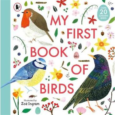 Zoe Ingram My First Book of Birds