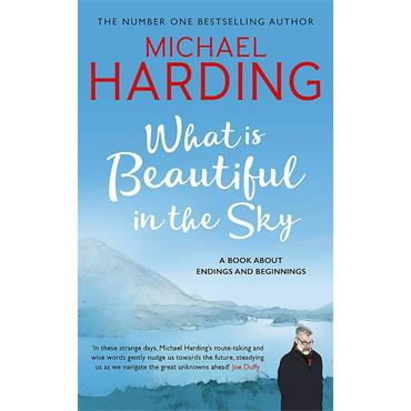 What is Beautiful in the Sky  - Michael Harding