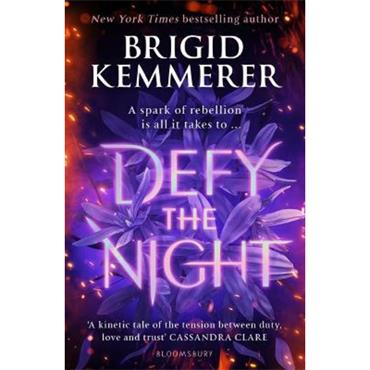 Brigid Kemmerer Defy the Night