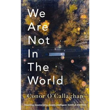 Conor O' Callaghan We Are Not in the World
