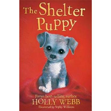 Holly Webb & Sophy Williams The Shelter Puppy