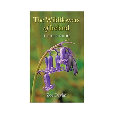 Wildflowers of Ireland Field Guide - Zoe Devlin