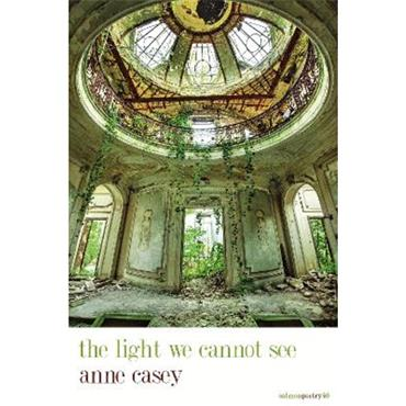 Anne Casey the light we cannot see