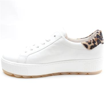GABOR 66538 LACED SHOE - WHITE