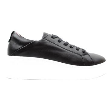 KATE APPLEBY CHALFORT LACED SHOE - Black