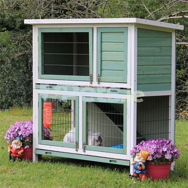 Abby Rabbit And Guinea Pig Hutch