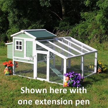 Extension Pen For Amy