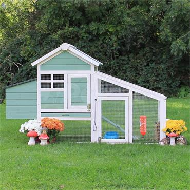Holly Rabbit And Guinea Pig Hutch