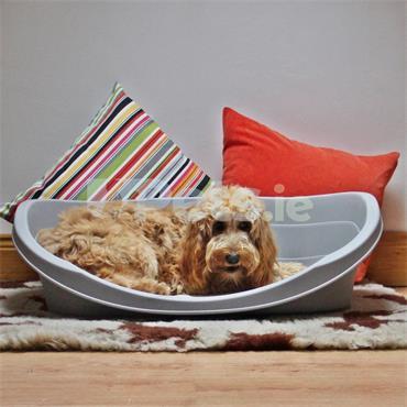 Plastic Dog Bed - Medium