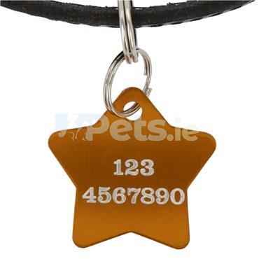 ID Tag - Gold Star