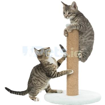 Kitten - Scratching Post - Mint