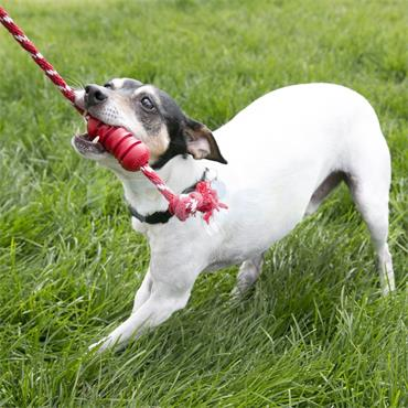 Dental with Rope - Dog Toy