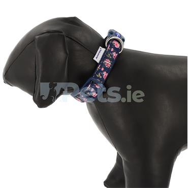 Navy Roses Dog Collar