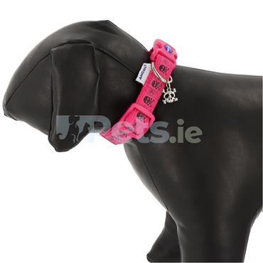 Pink Skulls Dog Collar