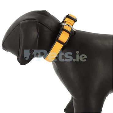 Classic Preno - Dog Collar - Orange/Grey