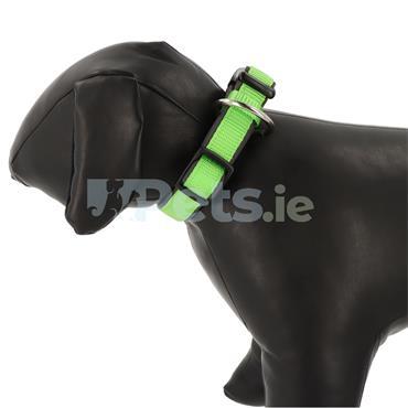 Classic Preno - Dog Collar - Green/Grey