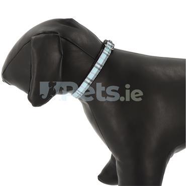Tartan - Puppy Collar - Light Blue